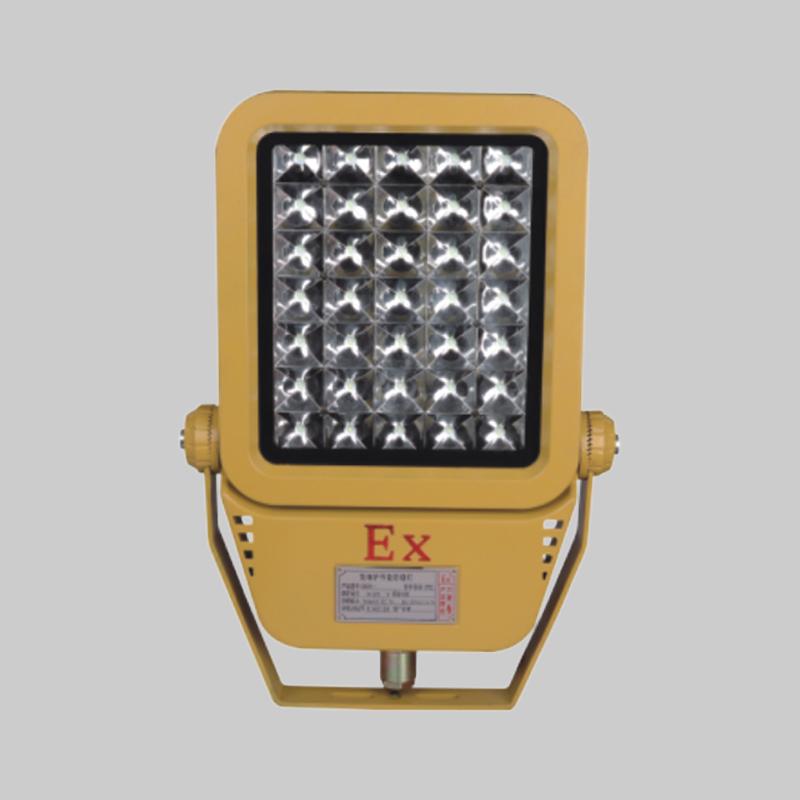 人民电器,人民电器集团,人民电器集团有限公司,中国人民电器,RDB98-MZ型防爆免维护节能灯(LED)