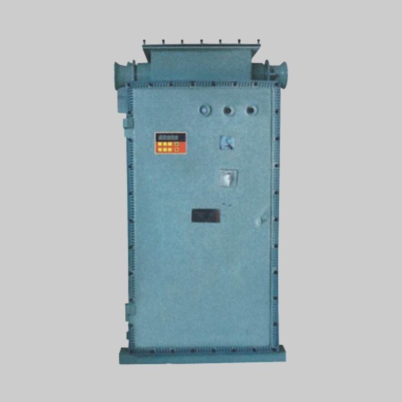 人民电器,人民电器集团,人民电器集团有限公司,中国人民电器,BQXB51系列防爆变频调速箱(II B)