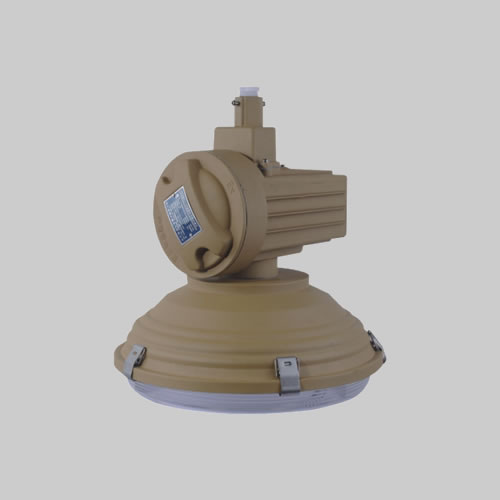 RDB88-D防爆免維護低碳無極燈(LED)