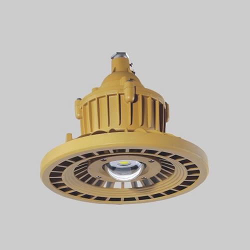 RDB98-8640防爆免维护节能灯(LED)