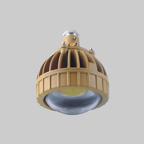 RDB98-8650防爆免维护节能灯(LED)