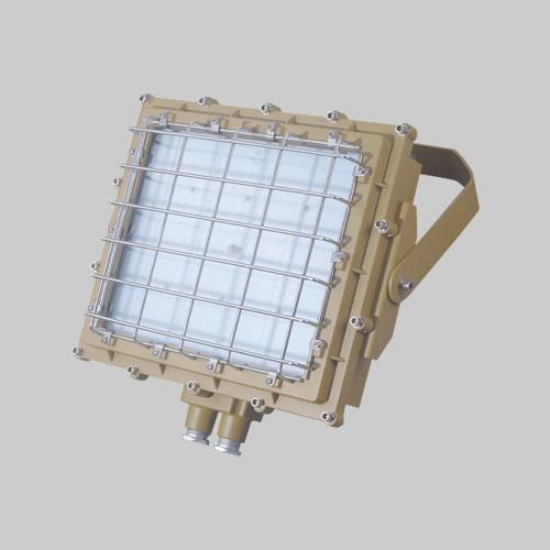RDB98-8669防爆免维护投光灯/泛光灯(LED)