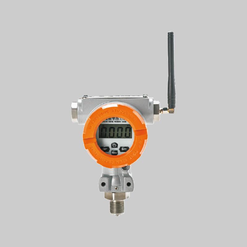 RD-W600消防水池液位监测装置
