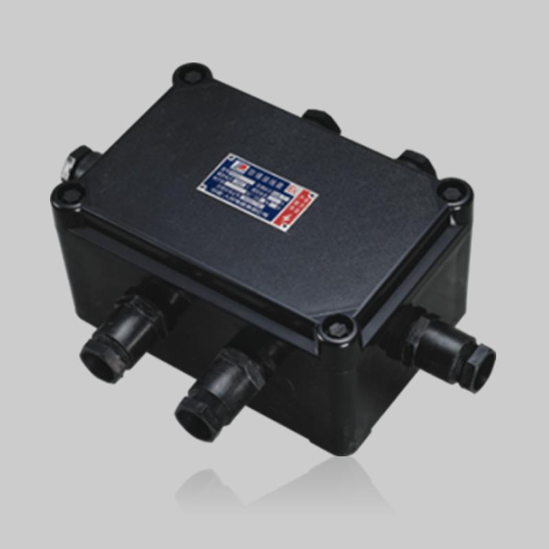 BXJ8030系列防爆防腐接線箱(ⅡC)