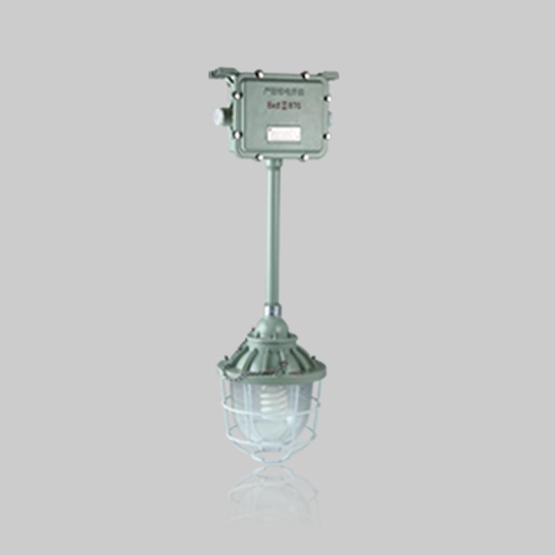 BAJ-DIP系列粉尘防爆照明应急灯(DIP)