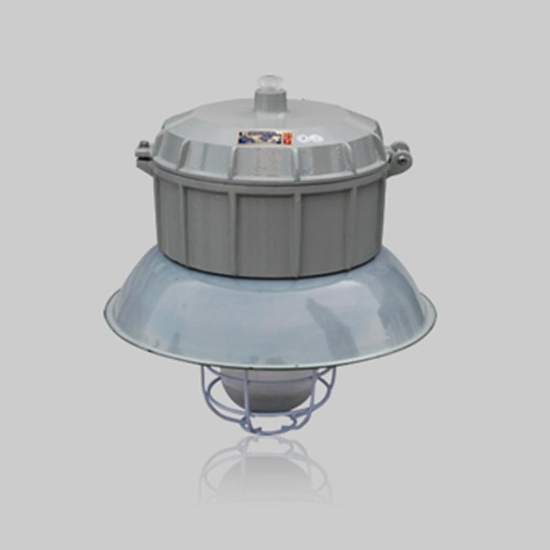 BAFD-DIP系列粉塵防爆防腐燈(DIP)