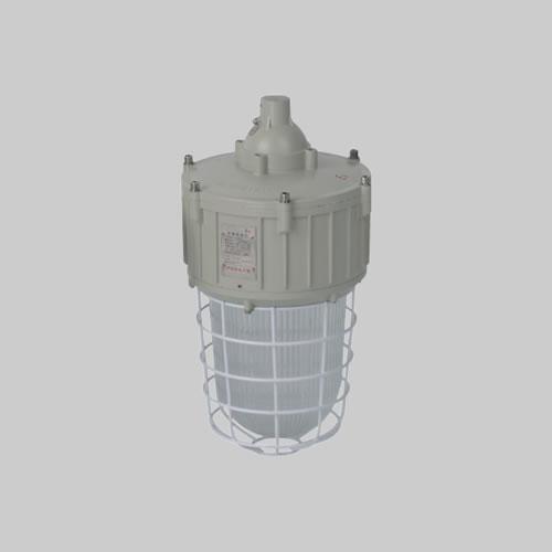 RDB82-G防爆燈(LED)