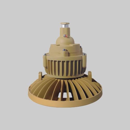 RDB98-M防爆免维护节能灯(LED)