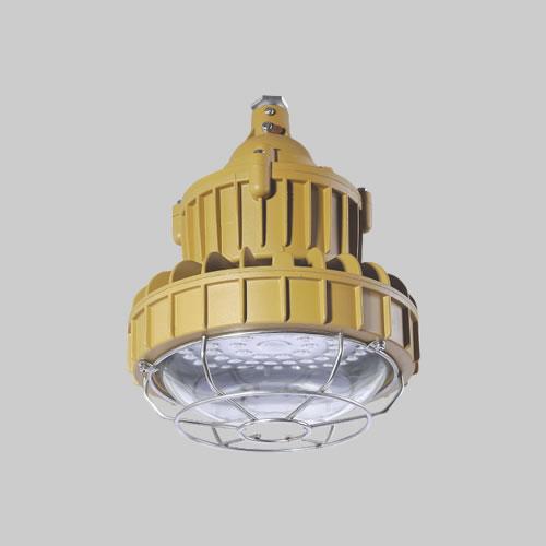 RDB98-8626防爆免维护节能灯(LED)