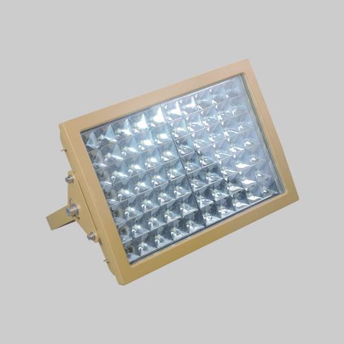 人民防爆电器RDB98-97防爆免维护节能投光灯/泛光灯(LED)
